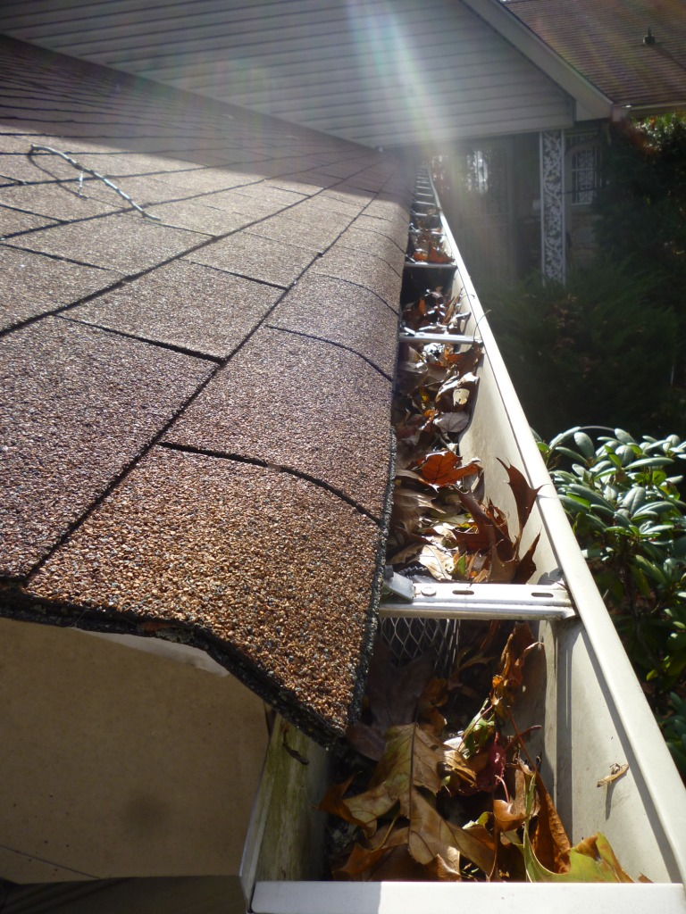 Gutter Cleaning In Harlem